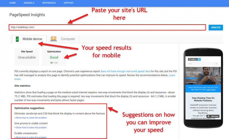 Screenshot of Google page speed insights tool with the most important elementes