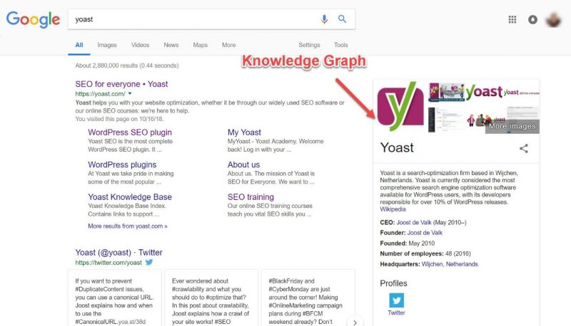 Screenshot of a knowledge graph in Google search results