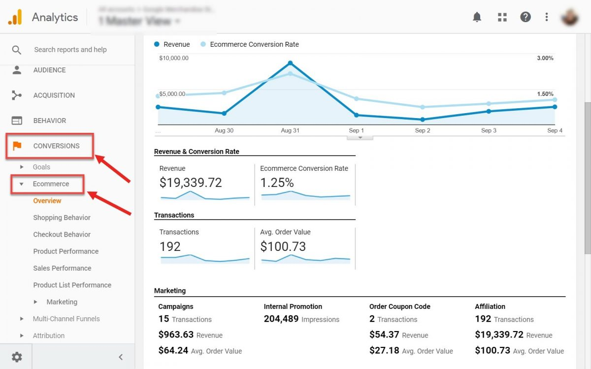 Ecommerce conversion report in GA