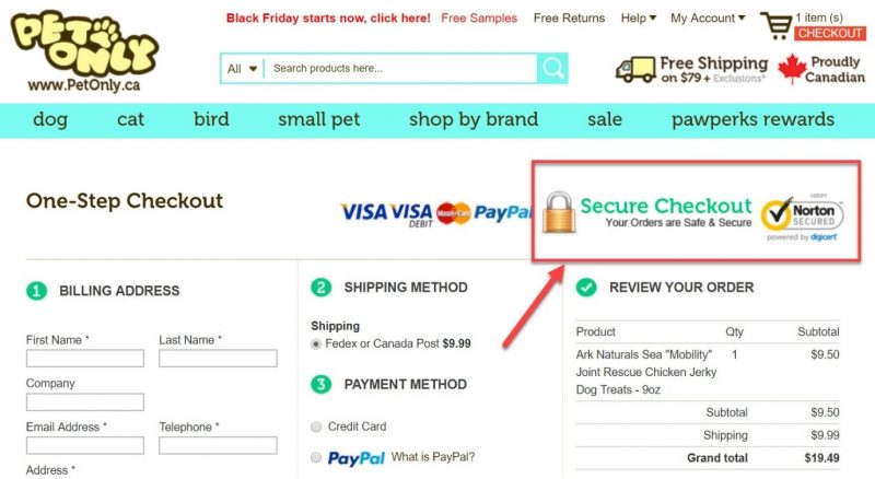 Screenshot of a secure payment logo on a checkout page