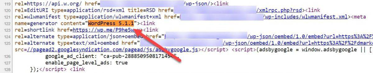 WordPress version in site's source code